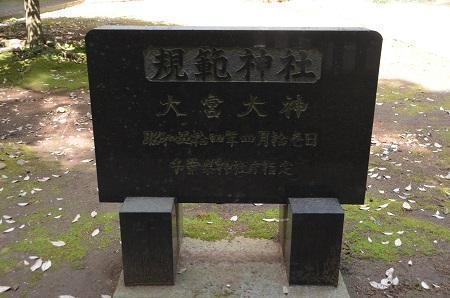 20180408大宮大神04