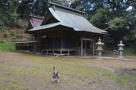 20180408戸田神社11