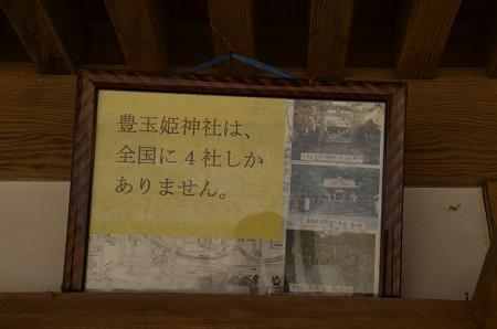 20180408豊玉姫神社0120