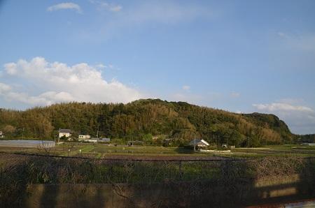 20180408櫻井子安神社14