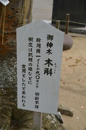 20180411白子神社28