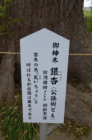 20180411白子神社32