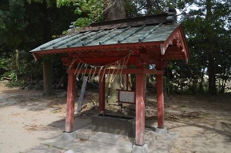 20180411住吉神社15