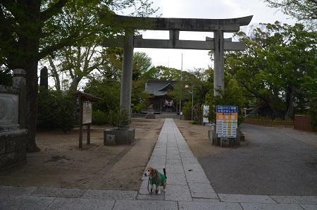 20180411八幡神社01