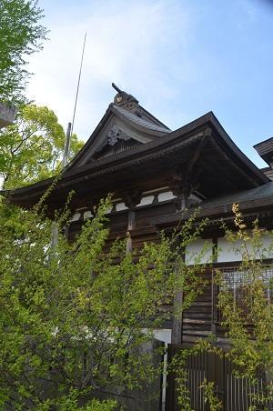 20180411八幡神社11