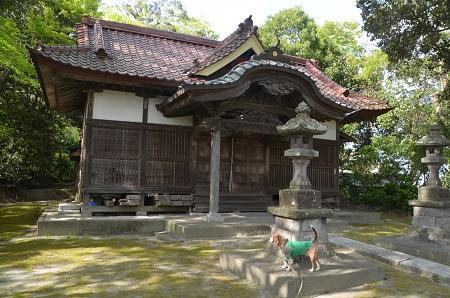 20180411伊弉子神社13