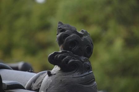 20180411柏原神社24