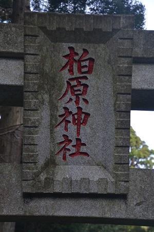 20180411柏原神社32