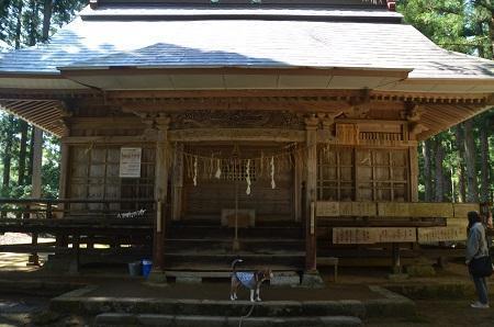 20180426高倉神社13