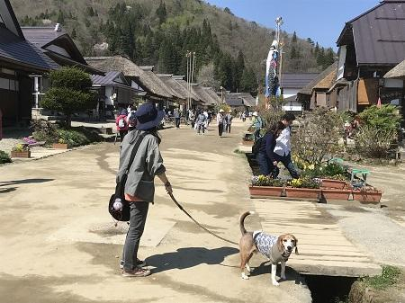 20180426高倉神社24