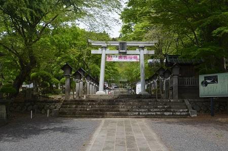 20180427南湖神社04