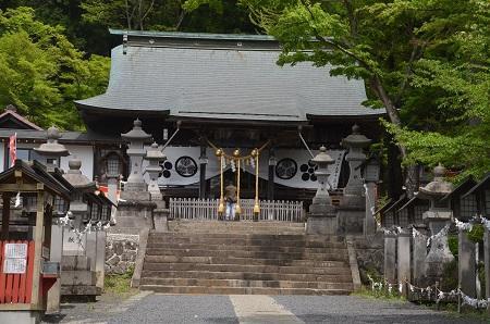 20180427南湖神社14