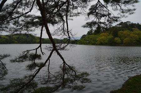 20180427南湖09