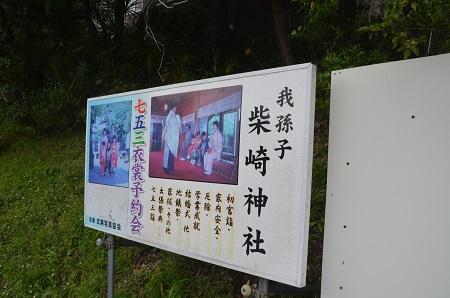 20180518柴崎神社04