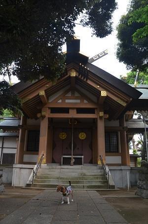 20180518北星神社11