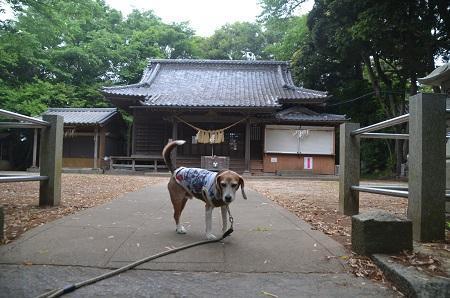 20180518竹内神社05