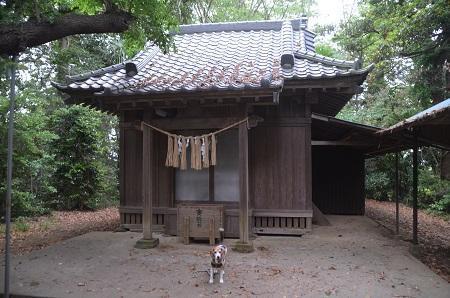 20180518浅間神社11