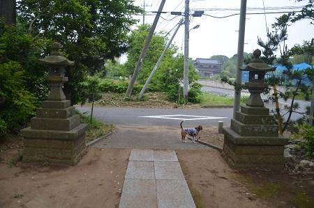 20180518素羽鷹神社0107