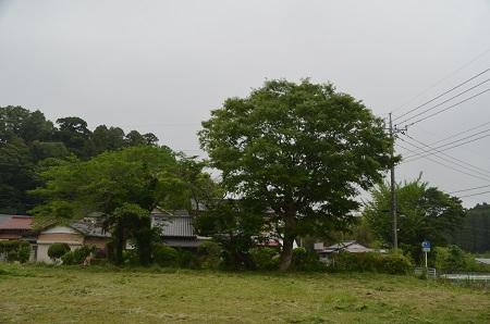 20180519寺谷分校15