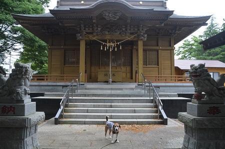 20180519磯ヶ谷八幡神社07
