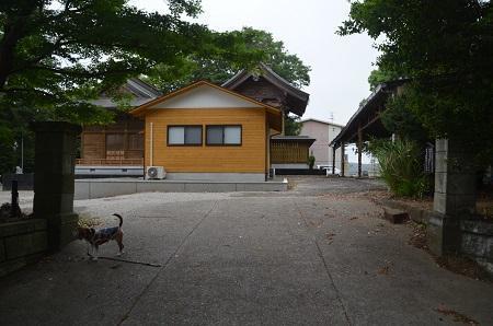 20180519磯ヶ谷八幡神社23