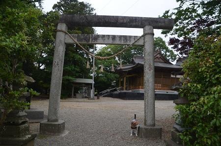 20180519磯ヶ谷八幡神社22