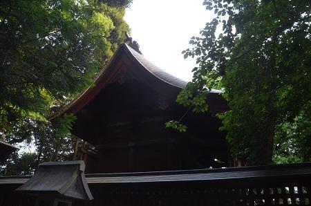 20180519菊間八幡神社14