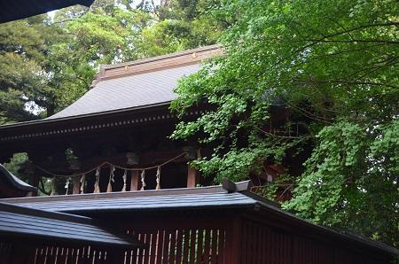 20180519菊間八幡神社39