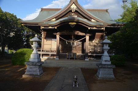 20180519大宮神社22