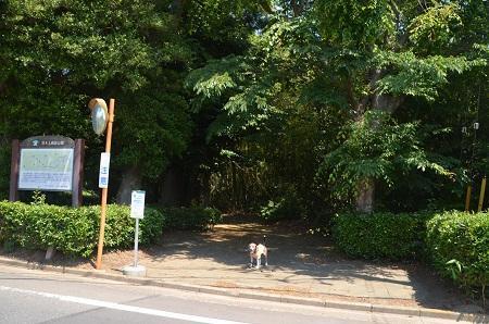 20180522羽木上森林公園01