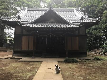 20180530皇産霊神社12