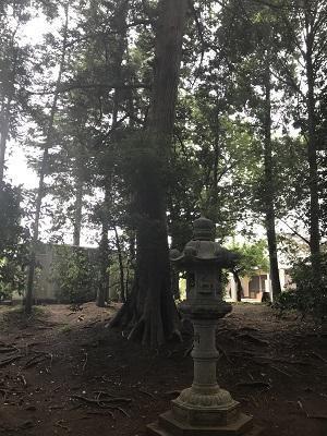 20180530皇産霊神社24
