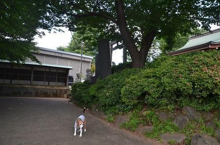 20180602我孫子香取神社01
