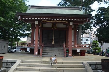 20180602我孫子香取神社07