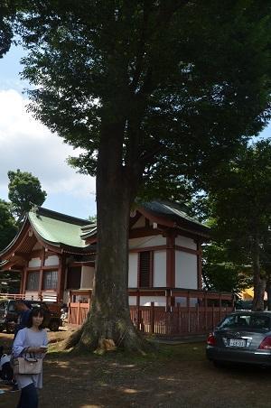 20180602我孫子香取神社22