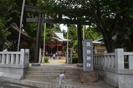 20180602諏訪神社02