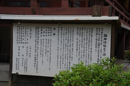 20180602柏神社15