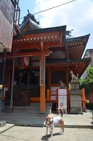 20180602豊受稲荷神社04