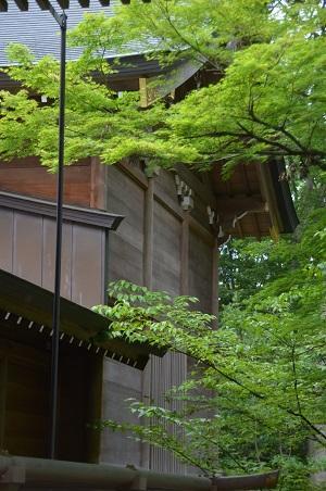 20180602広幡八幡神社18