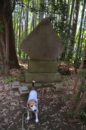 20180602大井香取神社17
