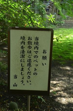 0180602福満寺03