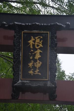 0180606根津神社03