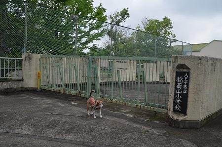 20180613稲荷山小学校07