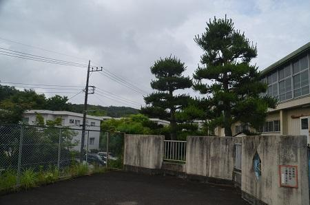 20180613稲荷山小学校14