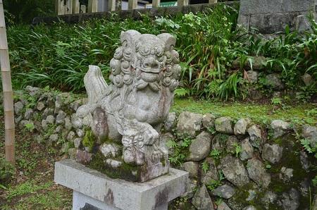 20180613氷川神社10