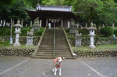 20180613氷川神社09