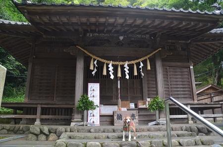 20180613氷川神社14