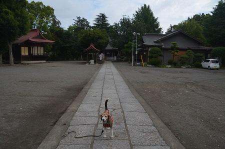 20180613諏訪神社06