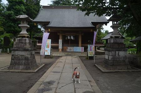 20180613諏訪神社08