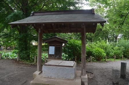 20180613諏訪神社23